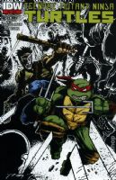 Teenage Mutant Ninja Turtles #22 - Second Printing Variant Cover
